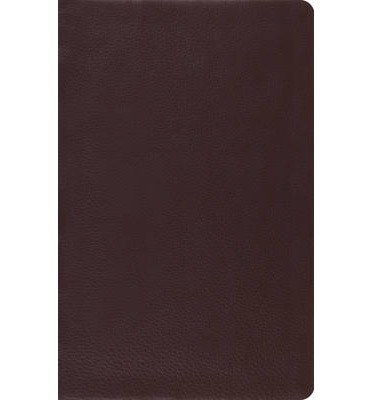 ESV Reference Bible - Brown Top Grain Leather