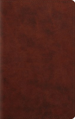 ESV Personal Bible - Brown Imitation Leather