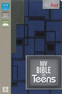 NIV Teen Bible - Blue/Gray