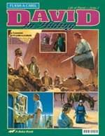 Abeka Flash-a-Cards: David in Hiding (David 2)