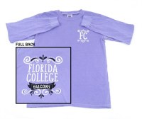 Comfort Colors Florida College Long Sleeve Tee
