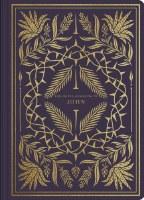 ESV Illuminated Scripture Journal - John