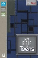 NIV Teen Bible - Blue/Gray