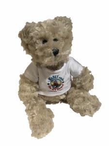 Travel teddy
