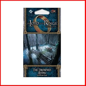 Lord of the Rings : The Drowned Ruins : Adventure Pack