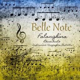 Belle Note Falanghina 2017