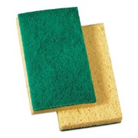 Yellow/Green Scrub Sponge