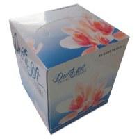 Facial Tissue Cube GEN(30/100)
