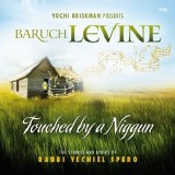 Baruch Levine - Touched By