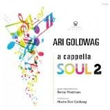 A Cappela Soul Volume 2