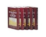 Insights In The Torah 5V Set