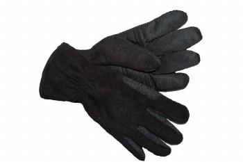 Auclair Fleece Glove