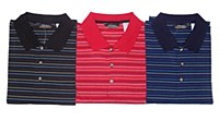 Big & Tall Small Striped Short Sleeve Polo
