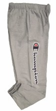 Champion Graphic Fleece Pant
