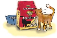 Dr Elsey's Cat Attract Scoopable Cat Litter 20lbs