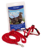 Premier Come with Me Kity Harness & Bungee Leash Medium Size
