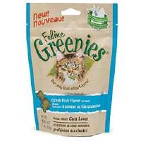 Greenies Felines Ocean Fish Flavor 3oz