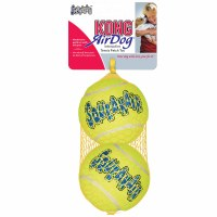 KONG AirDog Squeakair Large Ball 2-pack Dog Toy