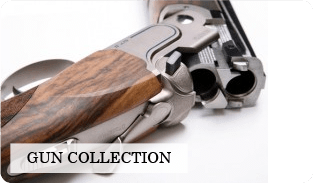 Gun collection