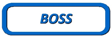 Boss Parts at Angelo's Supplies
