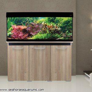 AquaVogue Aquarium