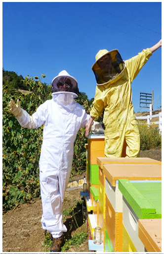 Cary and BeeGirl Harvesting Palace Farms Honey Bees