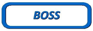 Boss Hydraulic Hoses