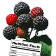 Oregon black raspberry