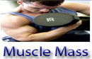 Gain Muscle Muscle Mass Fast