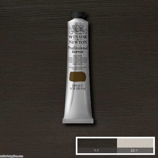 Raw Umber 200ml Artists' Acrylic Winsor & Newton