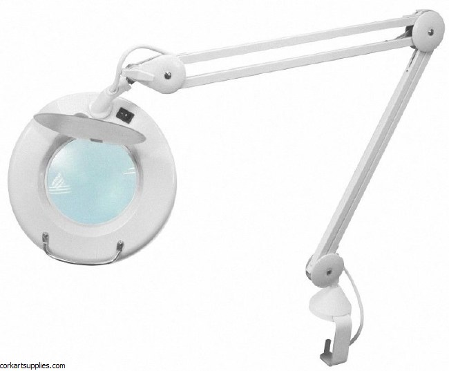Daylight Magnifier Lamp With Magnifier