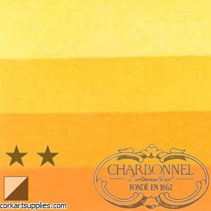 Charbonnel Ink 60ml IndianYel^
