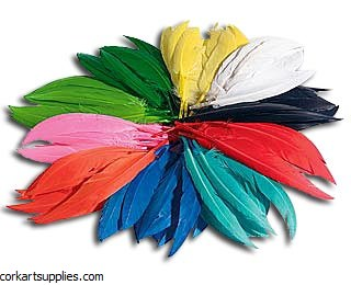 Feathers 100g BULK Indian