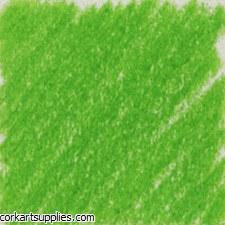 Polychromos Pencil 166 - Grass Green