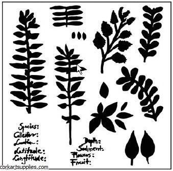 Mask CW 6x6 Herbarium
