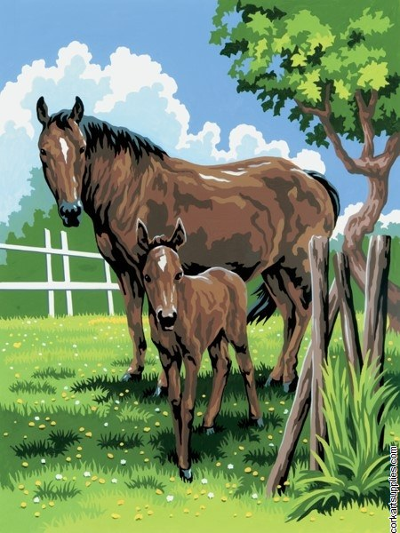 Paint By Numbers Horse & Foal