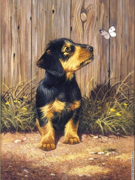 Paint By Numbers Dachshund