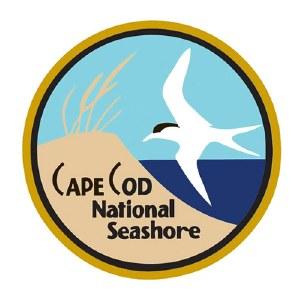 Golden Cape Cod Pin