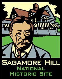 ANP Sagamore Hill NHS Pin