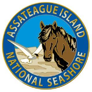 Assateague Island Wildlife Magnet