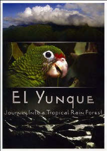 El Yunque: Journey into a Tropical Rain Forest DVD