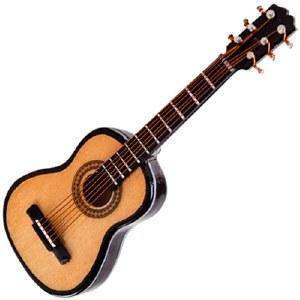 Steel String Guitar Magnet