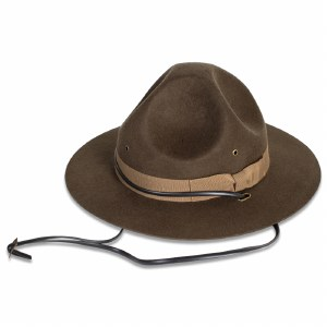 Wool Ranger Hat