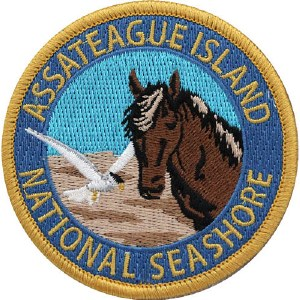 Assateague Wildlife Patch