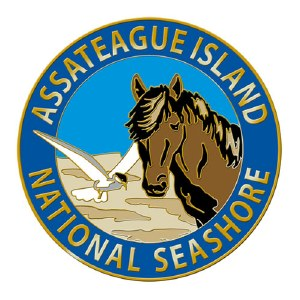 Assateague Wildlife Pin