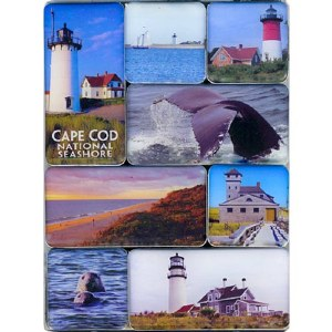 Cape Cod National Seashore Mini Magnets