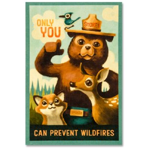 Smokey Bear Decal