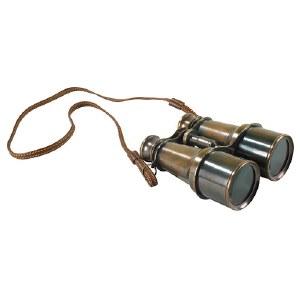 Bronze Victorian Binoculars