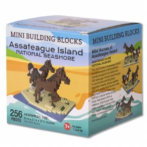 Assateague Island Mini Blocks
