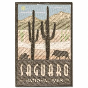 Saguaro Trailblazer Patch
